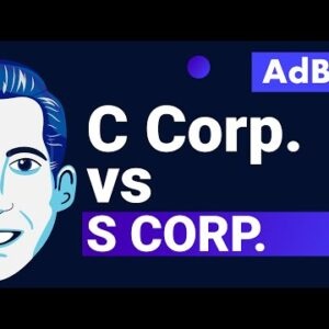 AdBits - C Corp vs. S Corp
